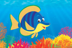 Tropical fish over a coral reef. Illustration of a tropical marine yellow and blue fish with deep blue stripes swimming over a colorfully coral reef in the sea Stock Photography