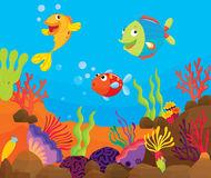 Tropical Fish Scene Royalty Free Stock Images