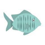 Tropical fish sea habitat graphic. Illustration eps 10 Royalty Free Stock Photo