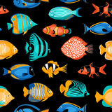 Tropical Fish Seamless Pattern Royalty Free Stock Photography