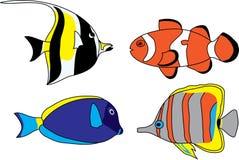 Tropical fish set Royalty Free Stock Photos