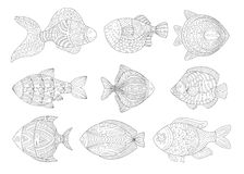 Tropical Fish Set Adult Zentangle Coloring Book Illustration Stock Photo