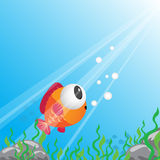 Tropical fish under water Royalty Free Stock Photography