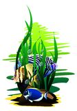 Tropical fish. (Vector). Vector image tropical fish on a white background Royalty Free Stock Images