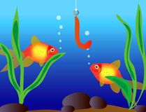 Tropical fishes. Beside hook with bait Royalty Free Stock Photo