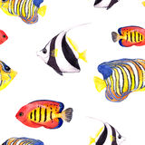 Tropical fishes. Repeating seamless pattern. Watercolor Royalty Free Stock Images