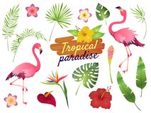 Tropical flamingos. Pink flamingo jungle flowers palm leaves, nature, summer beach, cute exotic plants flora cartoon. Vector set stock illustration