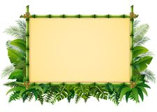 Tropical floral design background with green bamboo frame Stock Photos
