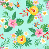 Tropical floral pattern on aquamarine background. Royalty Free Stock Photos