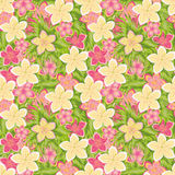 Tropical floral seamless pattern, vector Royalty Free Stock Photography