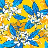 Tropical floral summer seamless pattern with plumeria flowers palm leaves. Vector illustration Tropical floral summer seamless pattern plumeria flowers palm vector illustration