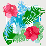 Tropical floral vector background. Royalty Free Stock Photography