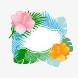 Tropical floral vector background. Stock Images