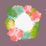Tropical floral vector background. Royalty Free Stock Images