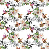 Tropical floral watercolor seamless pattern with colibris and flowers. Watercolor painting. Stock Images