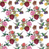Tropical floral watercolor seamless pattern with colibris and flowers. Watercolor painting. Stock Photography