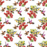 Tropical floral watercolor seamless pattern with colibris and flowers. Watercolor painting. Royalty Free Stock Photography