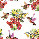 Tropical floral watercolor seamless pattern with colibris and flowers. Watercolor painting. Royalty Free Stock Photo
