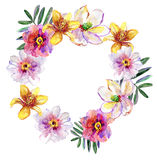 Tropical floral wreath bouquet, drawn in watercolor, isolated on white. Royalty Free Stock Images