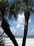 Tropical Florida. Gulf Coast. Madeira Beach Florida Royalty Free Stock Photos
