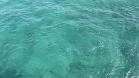 Tropical Florida Ocean Water. Background of wavy green blue Florida Atlantic ocean water with large rocks below the surface on a sunny winter day stock video footage