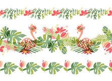 Free Tropical Flower And Flamingo, Hand Drawn Border Stock Photography - 136938072