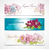 Tropical flower banners Royalty Free Stock Photo
