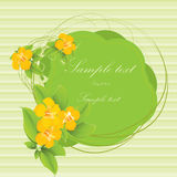 Tropical flower card Royalty Free Stock Photography