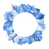 Tropical flower frame Royalty Free Stock Images
