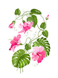Tropical flower garland Royalty Free Stock Photos