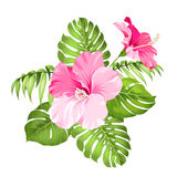Tropical flower garland Royalty Free Stock Images