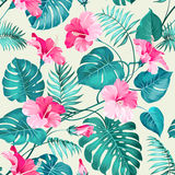 Tropical flower pattern. Seamless pattern of Tropical flowers. Blossom flowers. Nature background. Vector illustration Royalty Free Stock Photos