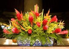Tropical flower pot Royalty Free Stock Photos