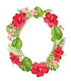 Tropical flower wreath. Stock Photo