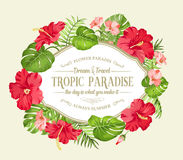Tropical flower wreath. Royalty Free Stock Photo