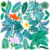 Tropical Flowers And Plants Set Royalty Free Stock Images