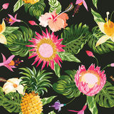 Tropical Flowers Background Stock Image