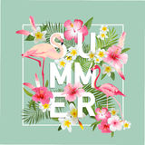 Tropical Flowers Background. Summer Design Royalty Free Stock Image