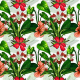 Tropical Flowers on Background - Vintage Seamless Pattern. Stock Photo