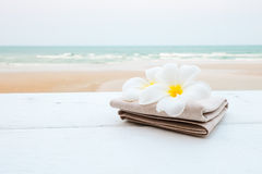 Tropical flowers on the beach Stock Image