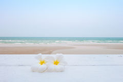 Tropical flowers on the beach Stock Photo