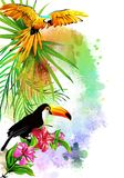 Parrot and Toucan on the background of multicolored paint splashes. royalty free stock images
