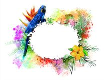 Parrot with a white banner on the background of multicolored paint splashes. stock photo