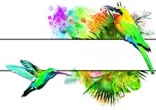 Tropical birds with a white banner on the background of multicolored paint splashes. royalty free stock photo