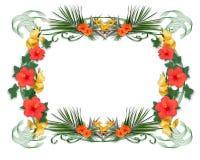 Tropical flowers border Stock Image