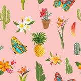 Tropical Flowers and Butterflies Background. Floral Seamless Pattern with Cactus and Pineapple Royalty Free Stock Image
