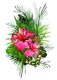 Tropical flowers and butterflies. Stock Photos