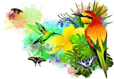 Tropical birds and butterflies on colorful paint splashes. stock photo