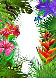Tropical butterflies in leaves and flowers. stock images