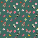 Tropical Flowers and Butterflies Seamless Pattern. Floral Jungle Background for Fabric and Textile. Vector illustration Royalty Free Stock Photography